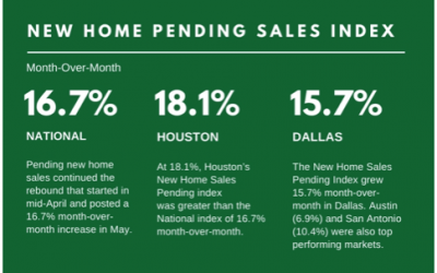 Special Report: New Home Sales